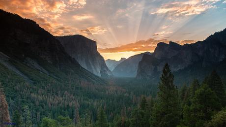 Estados Unidos. Donde la Naturaleza es Grande. Parte VI. Yosemite National Park
