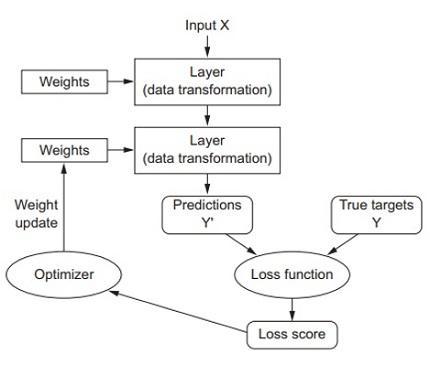 Estructura de una red neuronal y el inicio de una catalogación sencilla