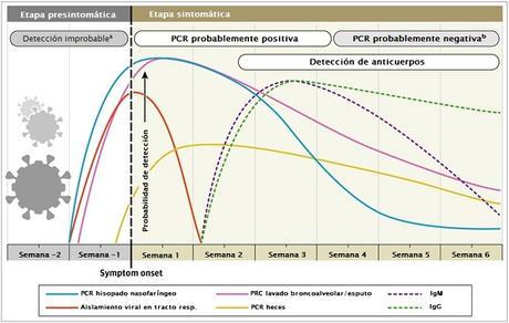 Interpretación de pruebas diagnósticas para SARS-CoV-2