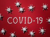 Historia pandemia hoguera vanidades