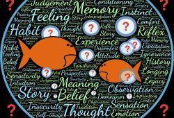 La Inteligencia Emocional en la era de la Inteligencia Artificial