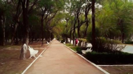 Planean sembrar árboles frutales y liberar aves en el Parque Morales