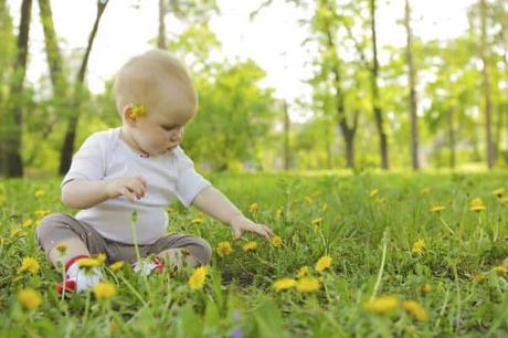 productos naturales para bebes