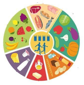 alimentacion sana y equilibrada