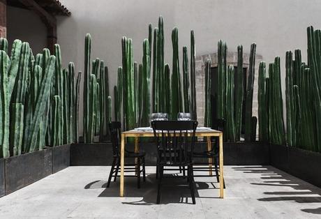 Montero-Terrace_0