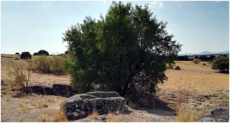 Necrópolis en Ripas-Menasalbas, Toledo