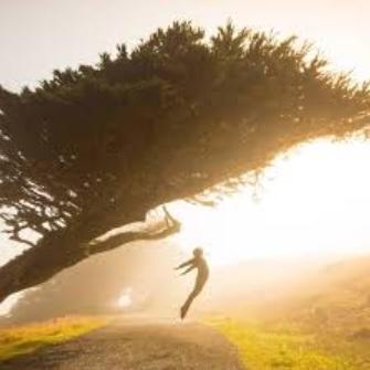 Brizna de luz: la nueva esperanza