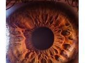 Acercamiento pupila