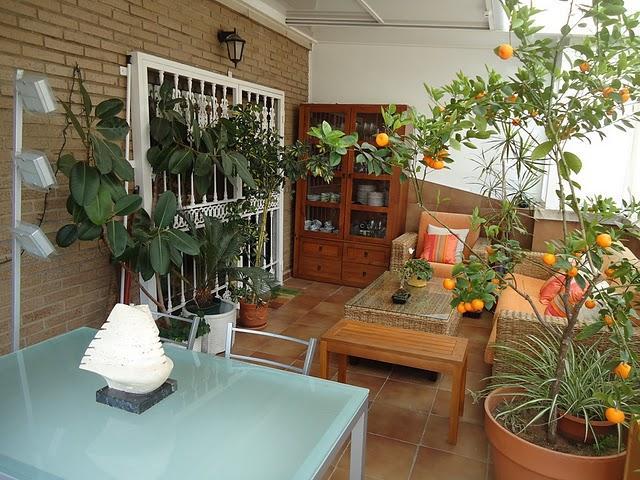 La terraza de adriana concurso terrazas patios y for Adornos para terrazas y patios