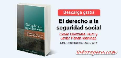 """Descarga """"El derecho a la seguridad social"""" de César Gonzales Hunt y Javier Paitán Martinez"""