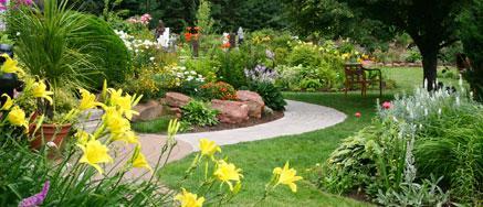 Preparados caseros y plaguicidas naturales para tus plantas