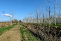 Acequia de Sils y camino para pasear andando o en bicicleta
