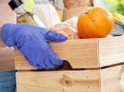 Herbalife Nutrition recuerda cómo garantizar seguridad alimentaria
