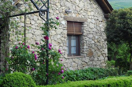 Vive el Verano: 8 Suite Deluxe con Jardín Privado!!!