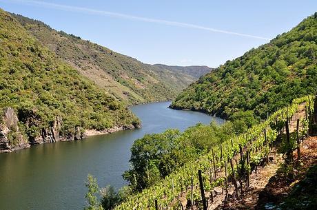 turismo de cercanía en Orense, vistas del río Sil