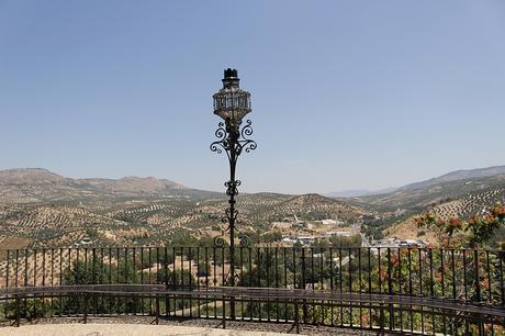 turismo de cercanía en Córdoba, vistas de olivos en Priego de Córdoba