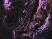 preciosa Nebulosa Velo
