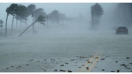 Temporada de huracanes 2020 en el Pacífico oriental: se anticipa más intensa que otros años