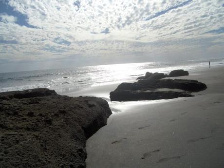 playa-el-zonte