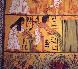 Mujer y hombre egipcios en plena cosecha