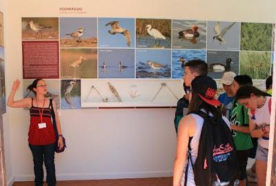 Juventud, investigación y marca propia: los planes de Castilla-La Mancha para educar en desarrollo sostenible