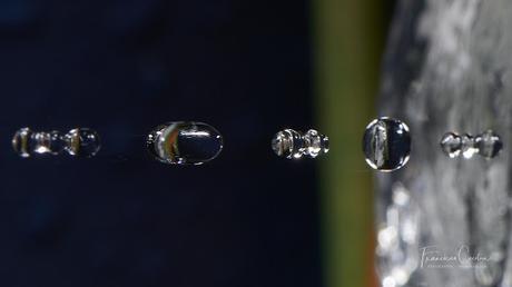 Fotografía Creativa VIII - Impacto de una gota