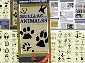 Novena Edición HUELLAS ANIMALES