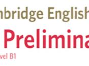 Preparar Preliminary cuenta (2020)