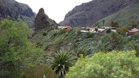 turismo de cercanía en Santa Cruz de Tenerife, vistas de Caserío de Masca