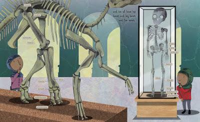 Fossil by Fossil: Comparing Dinosaur Bones (Sara Levine & T.S Spookytooth)