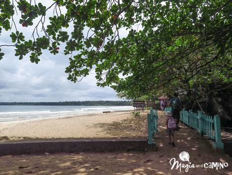 Algunas de las mejores playas para visitar en el Caribe