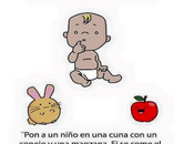 bebé, conejo, manzana falacia
