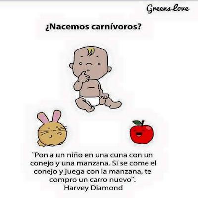 Un bebé, un conejo, una manzana y una falacia