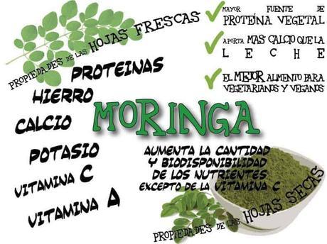 Moringa oleifera: qué es y para qué sirve