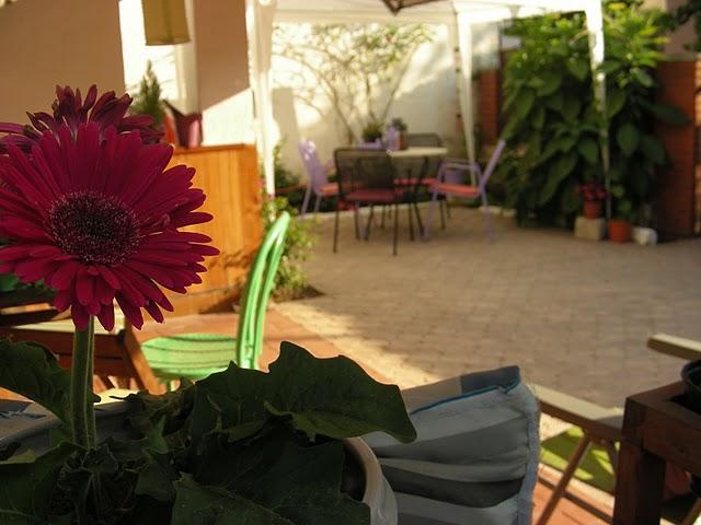 El patio de anabel concurso terrazas patios y balcones for Patios y terrazas