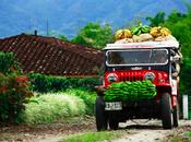Paisaje cafetero Colombia: Descanso aventura