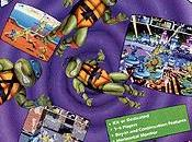 Teenage Mutant Hero Turtles: Turtles Time (1991)