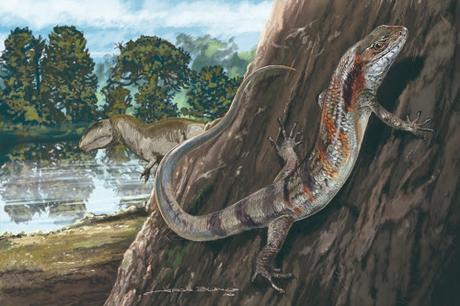 La lagartija fósil más antigua de Sudamérica