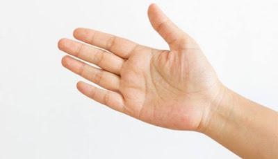 Cinco y no cuatro, dedos en Temnospóndilos