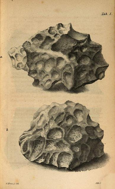 Casos de impactos de meteoritos a humanos y animales