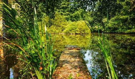 Medio ambiente y salud: una relación vital | Fundación Aquae
