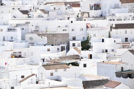 ¿Qué pasaría si se pintaran de blanco las azoteas de 100 ciudades?