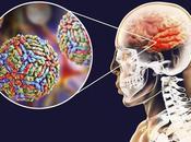 Virus Nilo España: Cómo evitar contagiarse este verano