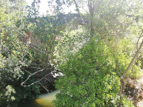 Arquitectura del paisaje: el puente medieval de Valdesotos