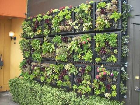Jardin Vertical Casero C Mo Hacer Jardines Verticales Paso A - politify.us