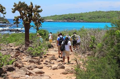Ecuador: Crean plan turístico en pandemia para las Islas Galápagos