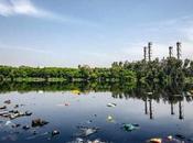 Cómo evitar contaminación agua: causas, consecuencias posibles soluciones
