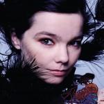 Björk: otra división