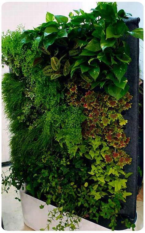Muros verdes el futuro paperblog for Jardines verticales concepto