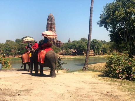 elefantes ayutthaya
